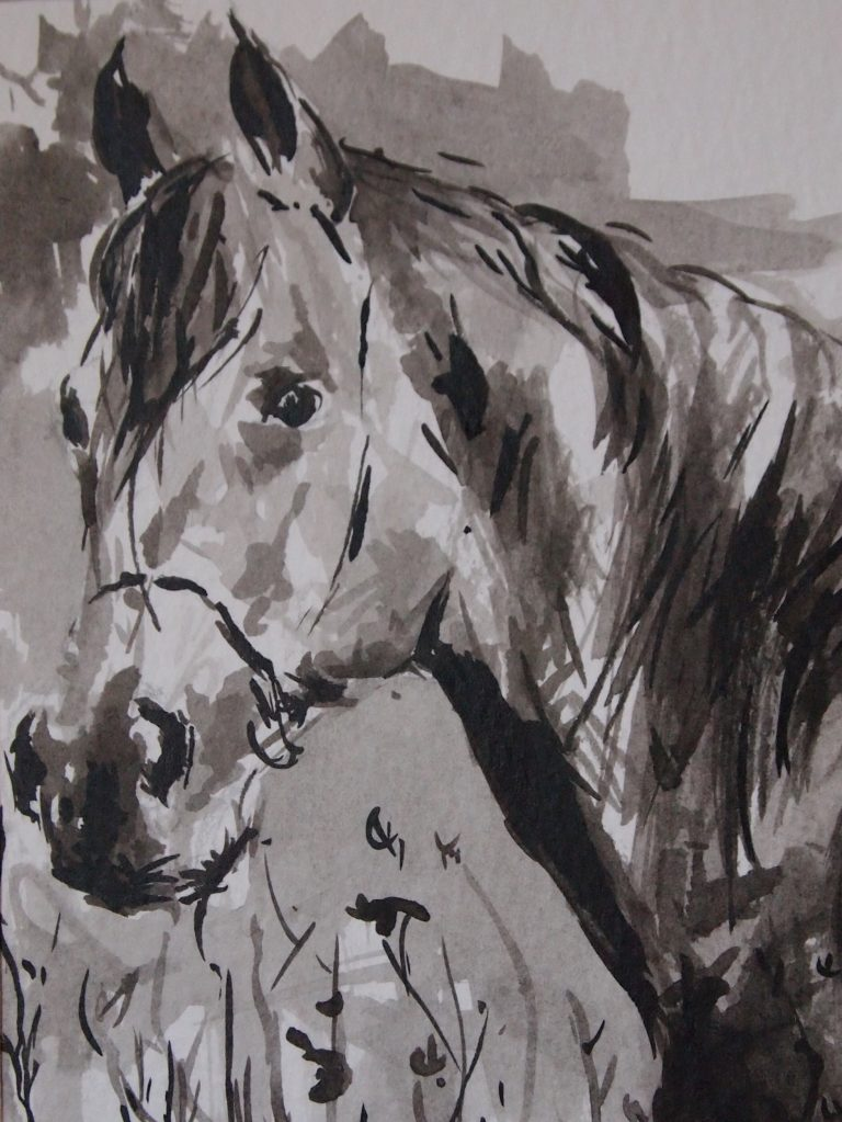 Ink and Wash Horse Portrait