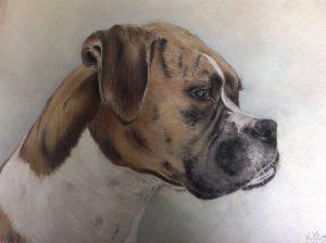Pastel Boxer Dog Portrait