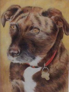 Coco Pastel Pet Portrait