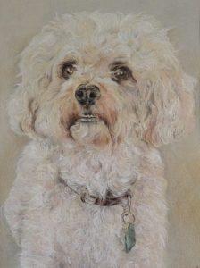 Mandy Pastel Pet Portrait