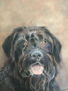 Monty Pastel Dog Portrait