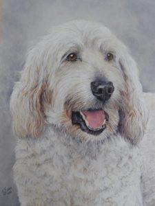 Hetty Pastel Dog Portrait
